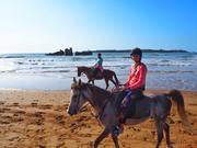 Horse back riding Marrakech